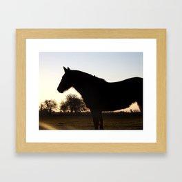 Backlit horse Framed Art Print