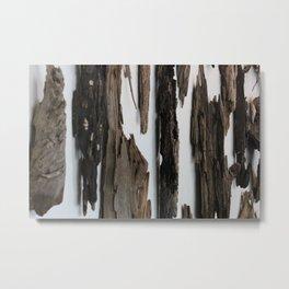 Wood Wall Metal Print