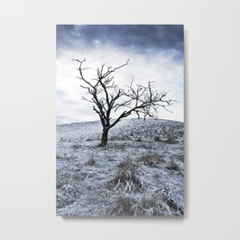 Winter in the Chilterns Metal Print