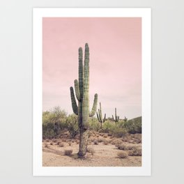 Blush Sky Cactus Art Print