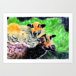 Two Ewes at Sunset Art Print