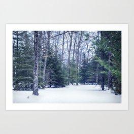 Winter Woods Art Print