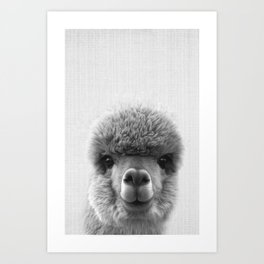 Alpaca Smile Art Print
