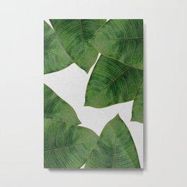 Banana Leaf II Metal Print