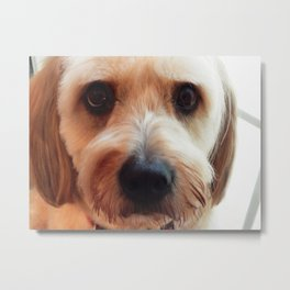 """I really did not want a haircut"" Metal Print"