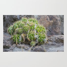 Lonely Cacti Rug