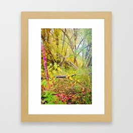 Secret Serenity Framed Art Print