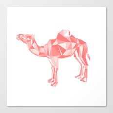 Red mirage Canvas Print