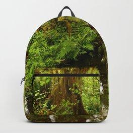 Rainforest Reflection Backpack