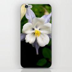 Colorado Columbine 2 iPhone & iPod Skin