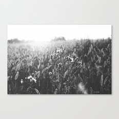 it was just a dream  Canvas Print