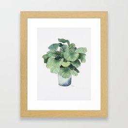 Urban Jungle - Plant Framed Art Print