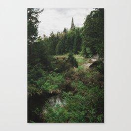 sneak peak Canvas Print