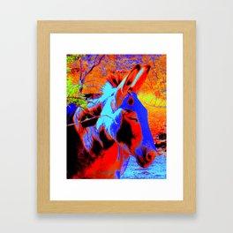 Oatman Burro Framed Art Print