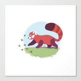 Red Panda cub Canvas Print
