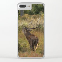 Red deer, rutting season Clear iPhone Case