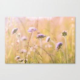Purple Wildflowers Canvas Print