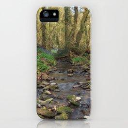 Plummers Brook iPhone Case