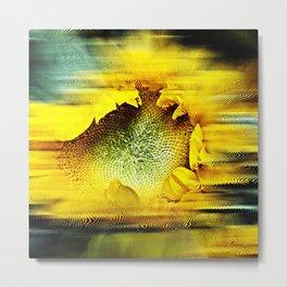 Sunflower Abstract Metal Print