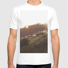 Sheep grazing on hillside at sunset. Derbyshire, UK. White Mens Fitted Tee MEDIUM