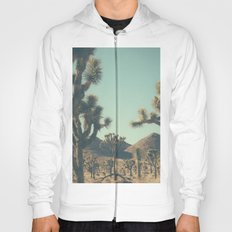 The catastrophe of forgiveness Hoody