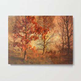 Textured Autumn Trees Metal Print