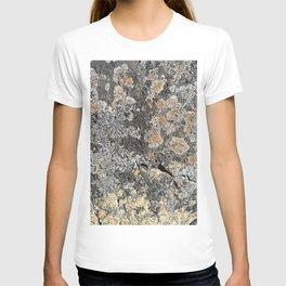 Lichen on the granite rock T-shirt
