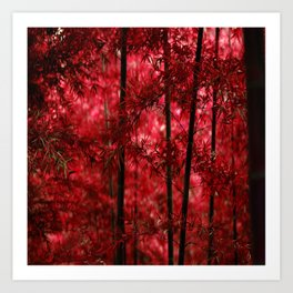 Red Bamboo Forest Art Print