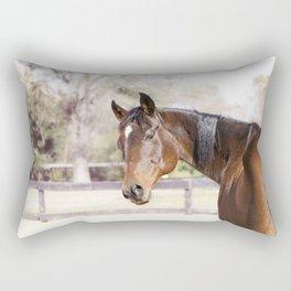 Dazzling Eyes Gulliver Rectangular Pillow