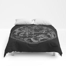 The Constellations - Dark Comforters