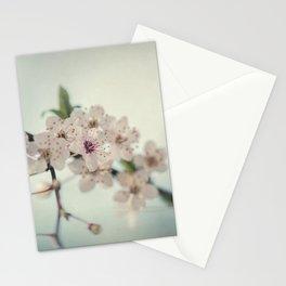 Sakura - Cherry Blossom - Floral Art Stationery Cards