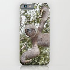 Sloth, A Real Tree Hugger Slim Case iPhone 6