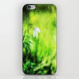 A white wood anemone flower in green iPhone Skin