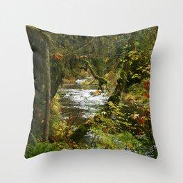 Images USA Silver Falls State Park Nature Autumn p Throw Pillow