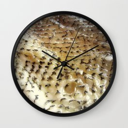 Fish Skin Wall Clock