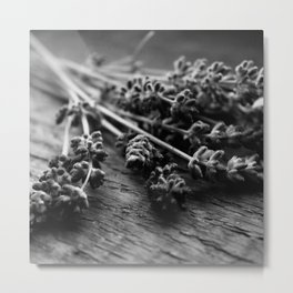 Lavender No. 2 (Black & White) Metal Print