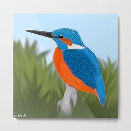 jz.birds Kingfisher Bird Design Metal Print