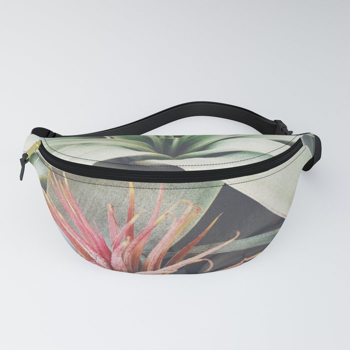 Air Plant Collection III Fanny Pack