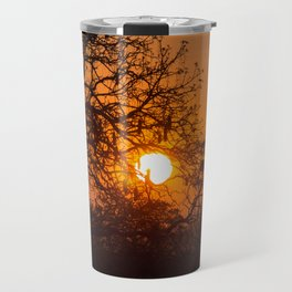 Sultry sun setting behind the sausage tree Travel Mug