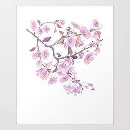 Cherry blossoms, sakura flower decor watercolor painting pink Art Print