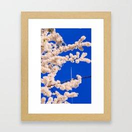 Go up Framed Art Print