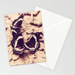 butterflies in The Sand Stationery Cards
