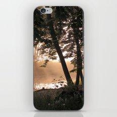 Morning Glade iPhone & iPod Skin