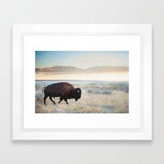 The Anonymous Buffalo Framed Art Print