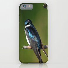 Barn Swallow Slim Case iPhone 6s