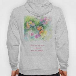 Butterflyes & Love quote Hoody