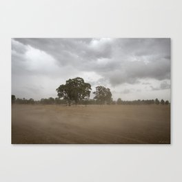 Blowing up a Storm Canvas Print