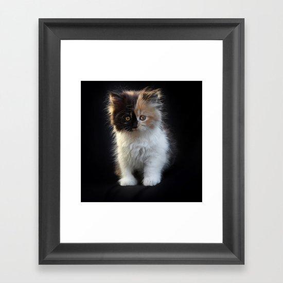 Cutest Kitten Ever Framed Art Print