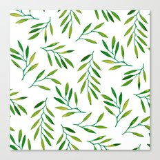 Willow -Green Canvas Print