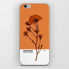 PANTONE 1385 U iPhone & iPod Skin